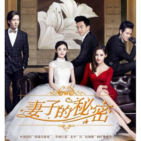 妻子的秘密~The Wife's Secret DVD